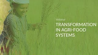 Transformation in Agri-Food Systems:  Preparing for the Future