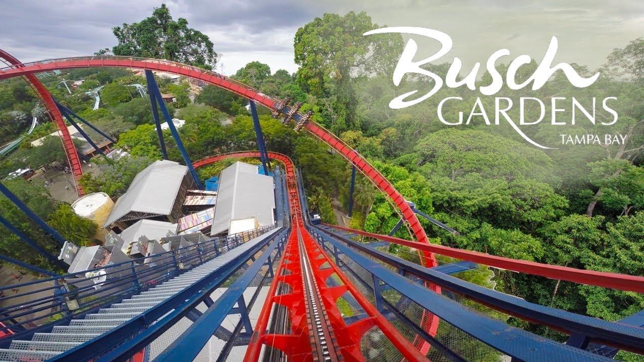 Sheikra backwards roller coaster pov busch gardens tampa - Busch gardens tampa roller coasters ...