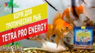 Корм для тропических рыб Tetra Pro Energy | Обзор корма для тропических рыб Tetra Pro Energy