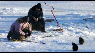 Забавные приколы и смешные моменты с рыбаками и просто любителями рыбалки