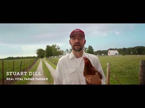 Bullsh*t Free Eggs | The Difference Between Pasture Raised And Cage Free Eggs