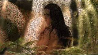 the Corrs- one night (Richard&Kahlan).wmv