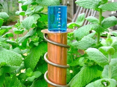 World's Coolest - Rain Gauge