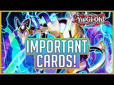 Yu-Gi-Oh! Cards You MUST HAVE From Phantom Rage!