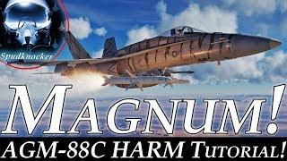 DCS: F/A-18C Hornet | AGM-88C HARM SP Mode Tutorial! | Magnum!