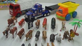 Đồ chơi trẻ em - Những con vật đáng yêu (Children toy - These adorable