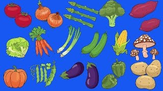 Learn Vegetables Vocabulary | Talking Flashcards