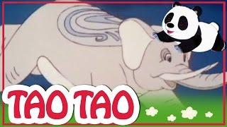 Tao Tao - 52 - פיל החלום