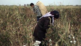 Vidéo : en Ouzbékistan, dans les coulisses d