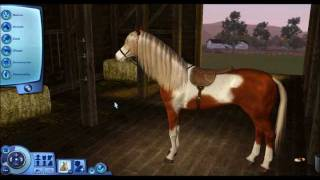 The Making Of Rain - Sims 3 Spirit