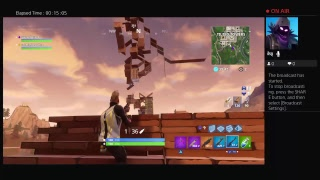 playing the Fortnite with randoms trolling