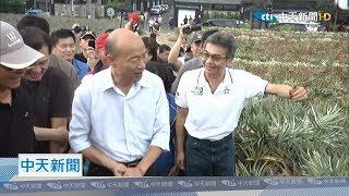 【全程影音】高雄外銷主力!韓國瑜10/5視察大樹鳳梨產業 強調「品質第一」絕對不能漏氣!