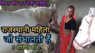 दिल से सलाम ऐसी महिला को || जो संभालती हैं 5घोडियो को ||horse life in village