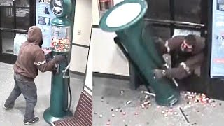 See Thief Try to Fit Gumball Machine Through Doggy Door