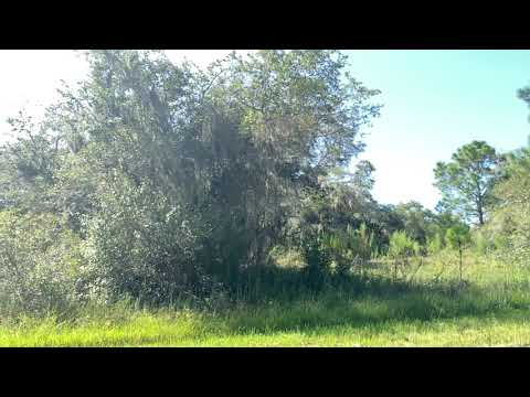 SOLD By Compass Land USA -0.24 Acres - With Paved Road! In North Port, Sarasota County FL