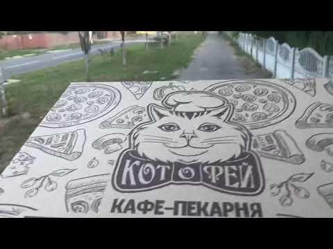 Боярка LOVE новини: Котофей Боярка!