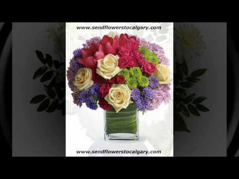 Send flowers from Romania to Calgary Alberta Canada