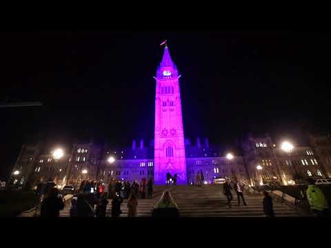 Peace tower turns purple for Shine The Light Campaign
