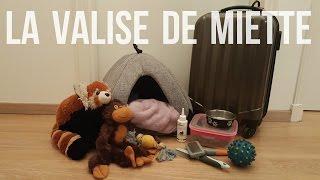Gambar cover LA VALISE DE MON CHIEN | Miette part en vacances ! | Toy Poodle (7 months)