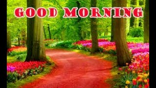 Good Morning Images WhatsApp status Messages Wishes Quotes Video fb status #GoodMorning