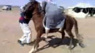 Download Video سبب توقف الفتوØات الإسلامية MP3 3GP MP4