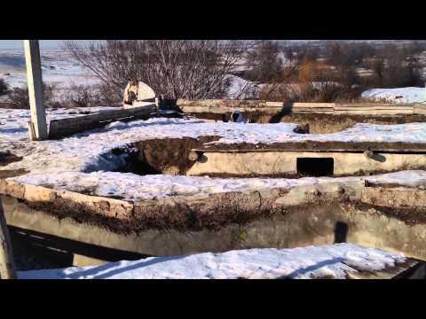 Пейнтбол в Алматы 27.12.14