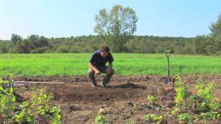 Vegetable Gardening : Planting A Raised Bed Garden