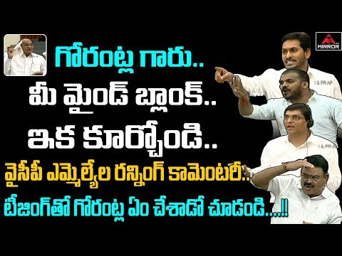 ysrcp-mla's-counter-to-tdp-mla-gorantla-buchaiah-chowdary-speech-|-ap-assembly-day-3-|-mirror-tv
