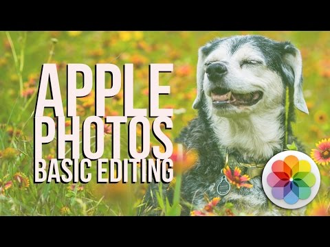 Apple Photos Tutorial - Basic Editing