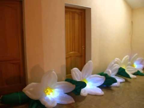 Цвета цветов. Цветы. #Пневмоцветы. Свадебные аксессуары. Цветы на свадьбу. Свадьба. Нарциссы