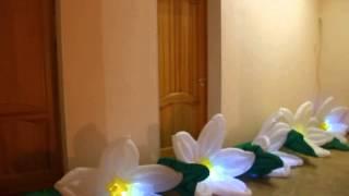 Цвета цветов. Цветы. #Пневмоцветы. Свадебные аксессуары. Цветы на свадьбу. Свадьба. Нарциссы(Свадебные аксессуары. Цветы на свадьбу. Свадебные цветы. Надувные Цветы, Распускающиеся Цветы, Пневмоцветы...., 2015-09-20T20:20:13.000Z)