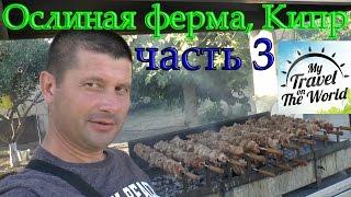 видео Где в Крыму провести «Ночь музеев»?