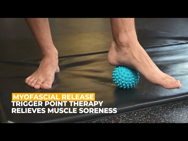 Best Muscle Roller for Plantar Fasciitis Trigger Point /& Back Pain Deep Tissue Roller for Acupressure Therapy /& Myofascial PHYSIX GEAR SPORT Massage Balls Foot Reflexology