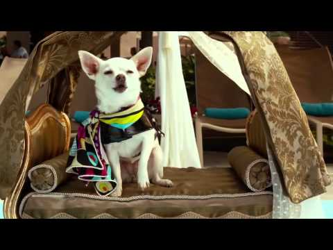 Beverly Hills Chihuahua 3  Raini Rodriguez  Living Your Dreams  Music Video   from YouTube