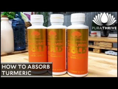 How to Absorb Turmeric: Curcumin Gold | PuraTHRIVE - Thomas DeLauer
