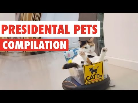 Presidential Pets Video Compilation 2016