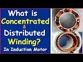 What is Concentrated and Distributed Winding in Induction Motor in Hindi ?