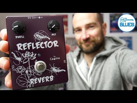 Caline Reflector Reverb Pedal Review - The Wettest Reverb Ever?