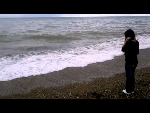 Paranormal   Criatura marina no identificada caleta olivia
