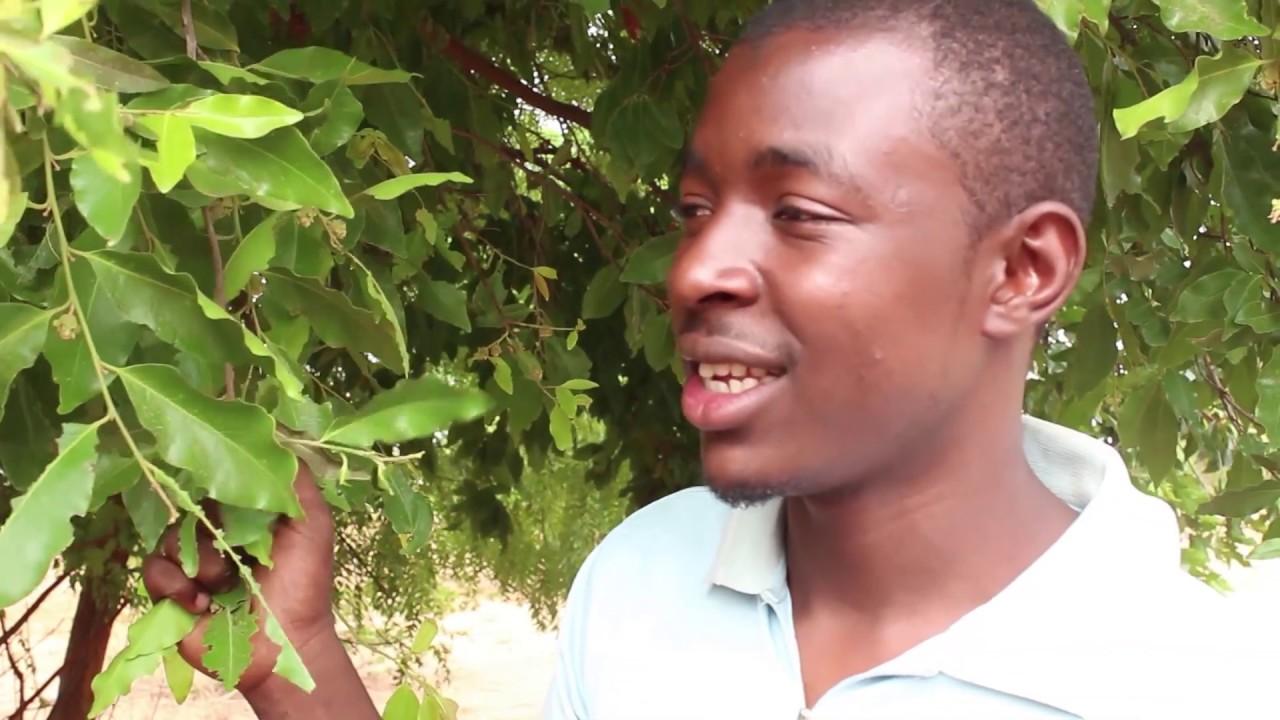 Download JAMI'A (Latest Hausa Film)