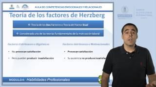 Teoría de los factores Herzberg