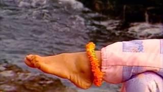 Gambar cover Wai Lana Yoga : Toe & Ankle Exercises