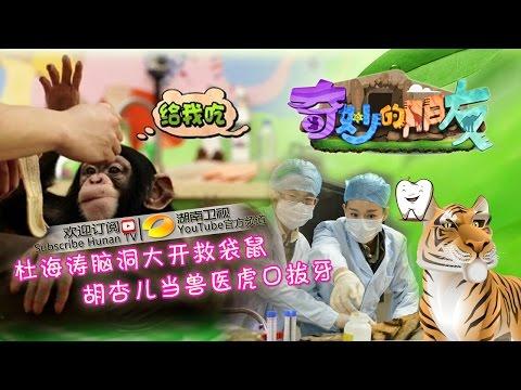 《奇妙的朋友》第8期 Wonderful Friends EP8:黄轩为倪妮推拿令杏儿心碎 Huang Xuan Makes Myolie Heart Broken【湖南卫视官方版1080p】