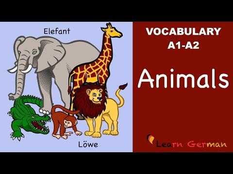 Learn German Vocabulary - Animals in German (Tiere)