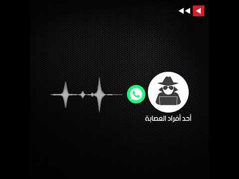 -الذهب الفرعوني-: عصابة خارجية تغوي أردنيين.. و-الأمن- يحذر  - نشر قبل 16 ساعة
