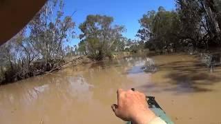 Boar shot with a shotgun from a kayak.
