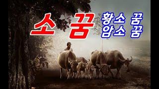 소꿈의 의미, 소가 나오는 꿈 상황별 꿈해몽