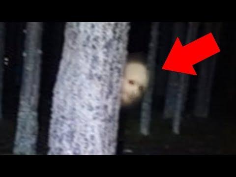7 Страшных Вещей, Снятых На Камеру в Лесу