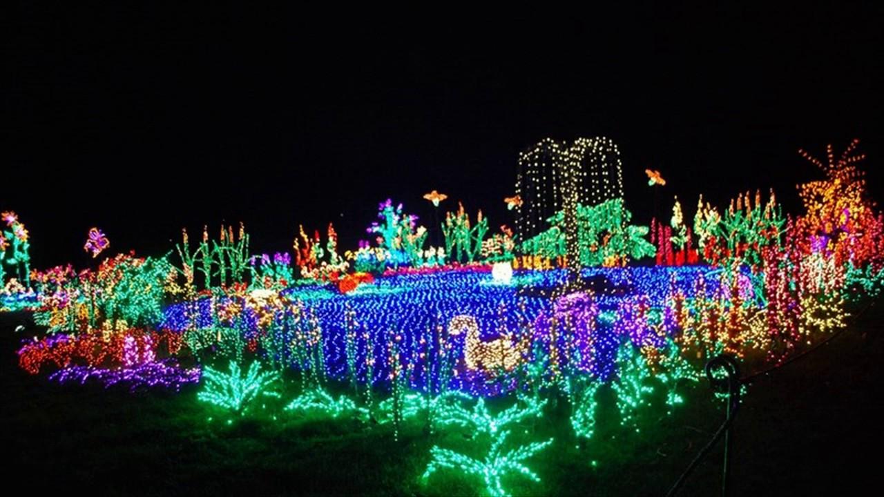 Captivating New Years Flashing Blinky Lights