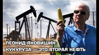 Леонид Яковишин: Кукуруза — это вторая нефть | Latifundist